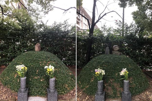 相模台城(松戸市。東京聖徳学園)経世塚