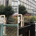 Photos: 相模台城(松戸市立相模台小学校・千葉地方裁判所)土塁