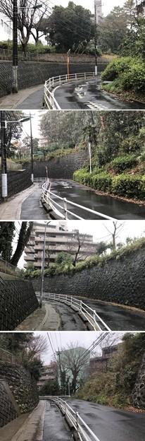 相模台城(松戸市)大堀切跡
