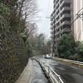 Photos: 相模台城(松戸市)大堀切跡