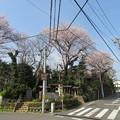 Photos: 18.03.27.矢喰村庚申塚(松戸市)