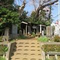 Photos: 矢喰村庚申塚(松戸市)