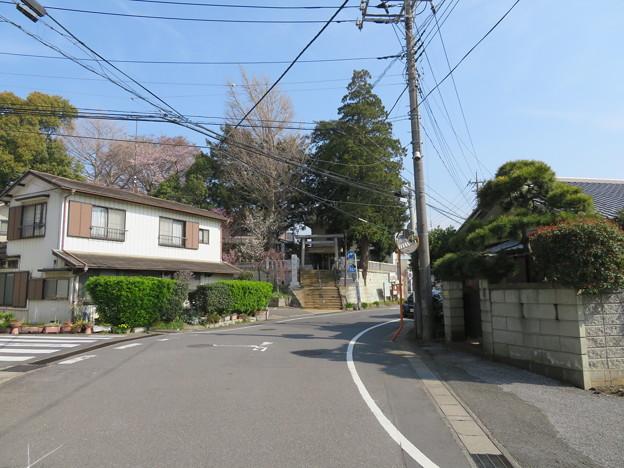 18.03.27.矢喰村庚申塚(松戸市)より矢切神社