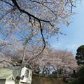 18.03.27.第二次国府台合戦場/大坂(松戸市)