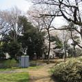 Photos: 18.03.27.国府台城(市川市)本丸櫓台