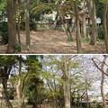 Photos: 国府台城(市川市)本丸東郭