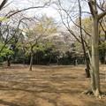 Photos: 18.03.27.国府台城(市川市)本丸東郭