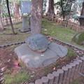 写真: 国府台城(市川市)夜泣き石