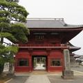 Photos: 徳願寺(市川市本行徳)仁王門