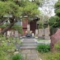 Photos: 法善寺(市川市)