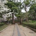 Photos: 18.03.27.戸定邸(松戸市営 戸定が丘歴史公園)/松戸城外郭