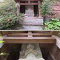 Photos: 松戸城(千葉大学松戸キャンパス)
