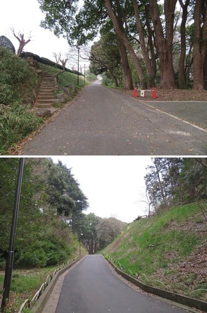 松戸城(千葉大学松戸キャンパス)堀切