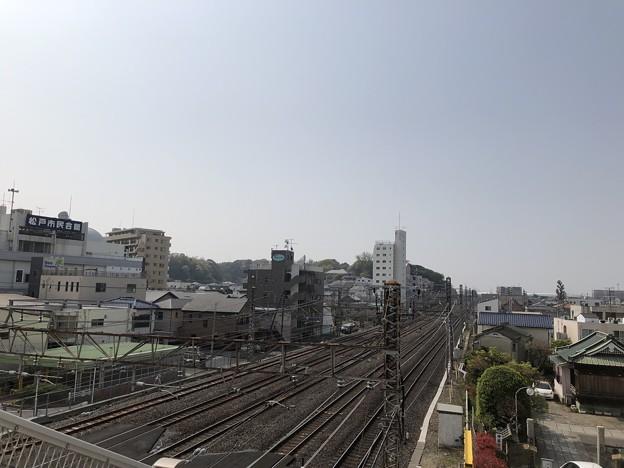 松戸城(松戸市)