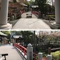 松戸神社(千葉県)潜龍橋