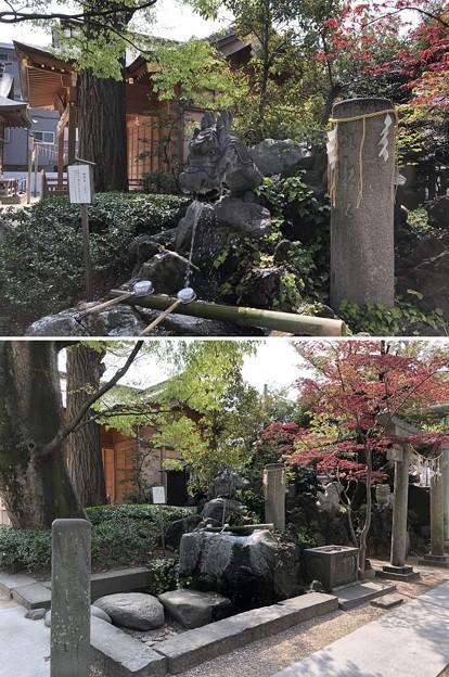 松戸神社(千葉県)御神水