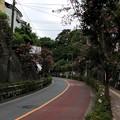 写真: 平塚城跡(北区)蝉坂