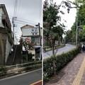 Photos: 平塚城跡(北区)蝉坂