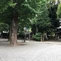 写真: 平塚神社/平塚城跡(北区)境内