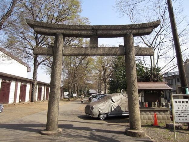 12.04.10.平塚神社/平塚城跡(北区)