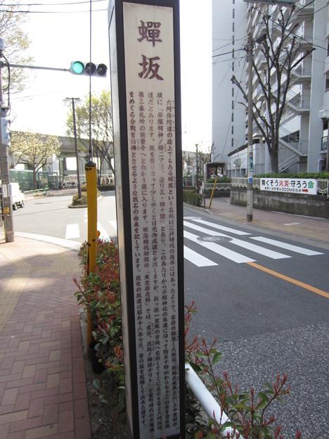 Photos: 12.04.10.平塚城跡(北区)蝉坂