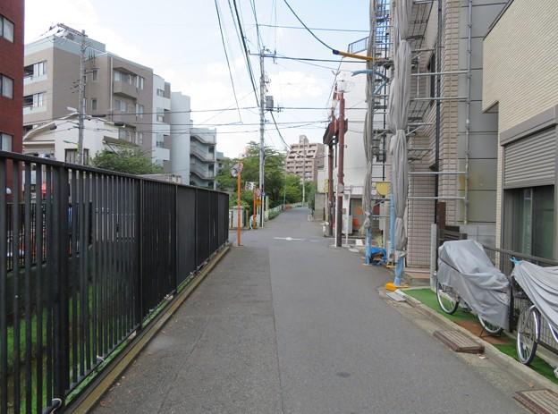 三田用水 笹塚橋近く(渋谷区笹塚)