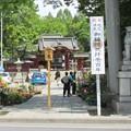 写真: 秩父神社(埼玉県秩父市)