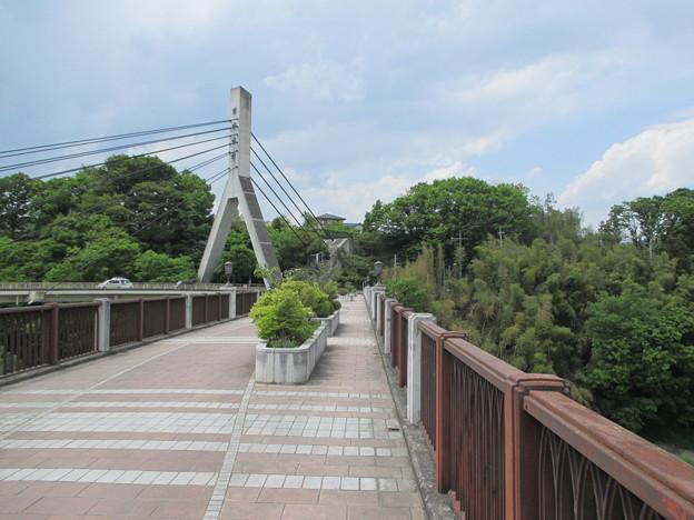 旧秩父橋(埼玉県)