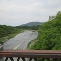 Photos: 旧秩父橋(埼玉県)