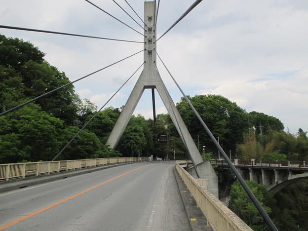 新秩父橋(埼玉県)