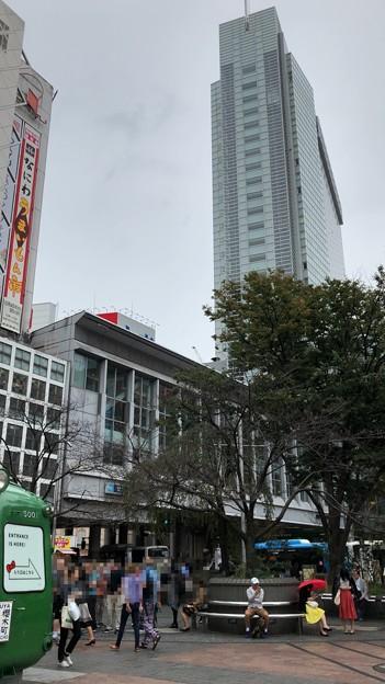 渋谷マークシティ・忠犬ハチ公像(渋谷区)