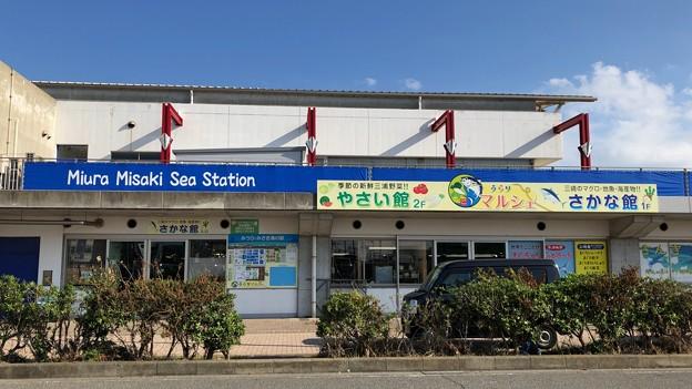 写真: うらりマルシェ(三浦市)