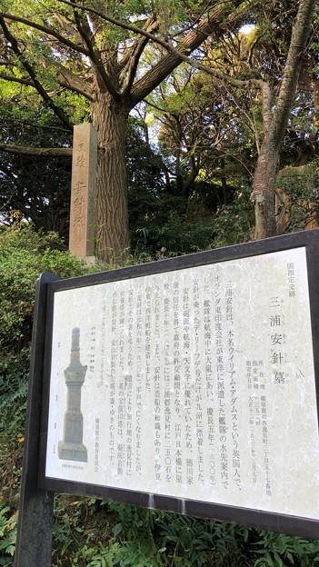 安針塚(按針塚。横須賀市 県立塚山公園)