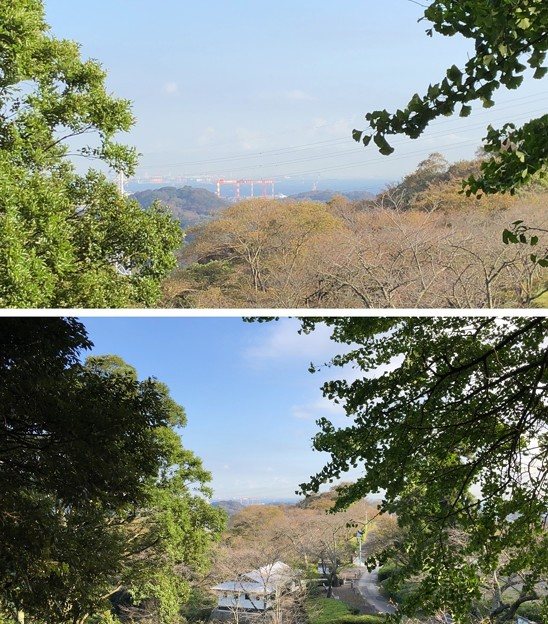 安針塚前より(按針塚。横須賀市 県立塚山公園)