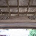 Photos: 信楽寺(横須賀市)山門