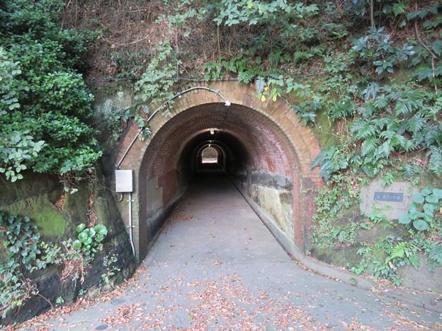 レンガ隧道・先、北門第三砲台跡(横須賀市)