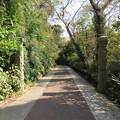 観音崎砲台 三軒屋砲台跡(横須賀市)石柱