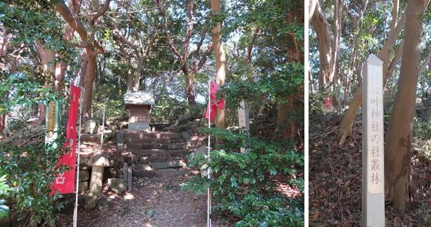 浦賀城/叶神社(横須賀市)東照宮
