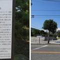 写真: ペリー上陸記念碑(横須賀市営 ペリー公園)
