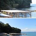 写真: 横堀海岸(三浦市)