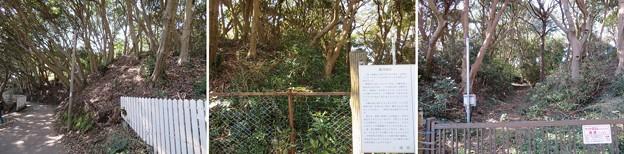 新井城(三浦市)横堀