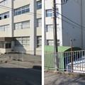 Photos: 三崎城(三浦市)大手郭、堀切・土塁