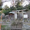 写真: 和田城(和田氏館。三浦市)八雲社