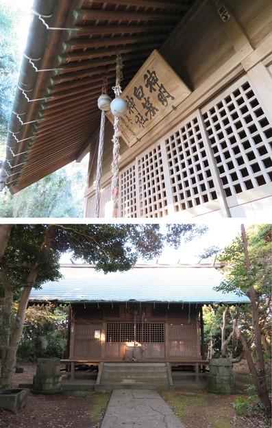 白旗神社(三浦市初声町和田)