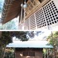 写真: 白旗神社(三浦市初声町和田)