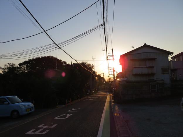 蘆名氏館・芦名城(横須賀市)東から