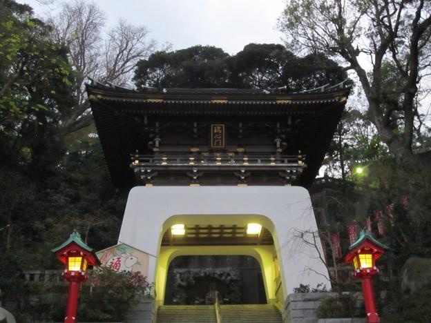 11.11.30.江島神社(藤沢市江の島)瑞心門