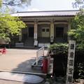 写真: 鶴岡八幡宮(鎌倉市)白旗神社参道
