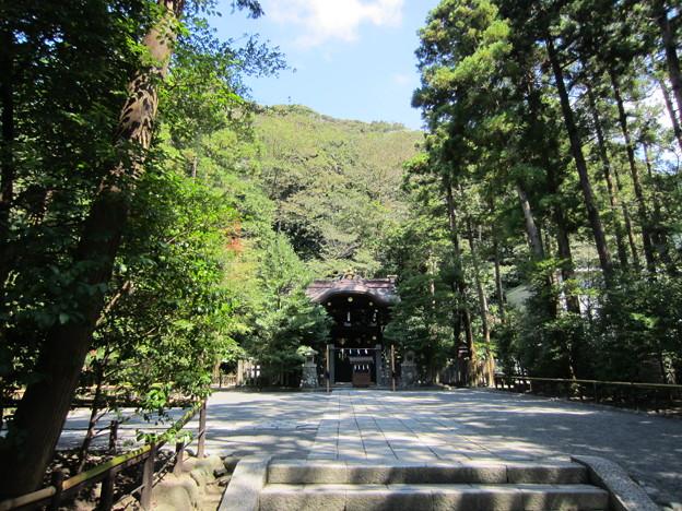 鶴岡八幡宮(鎌倉市)白旗神社社殿