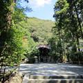 写真: 鶴岡八幡宮(鎌倉市)白旗神社社殿